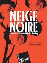 Neige noire, Variations sur la vie de Billie Holiday, Théâtre de la Tempête