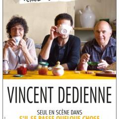 S'il se passe quelque chose, Vincent Dedienne, Petit Hébertot