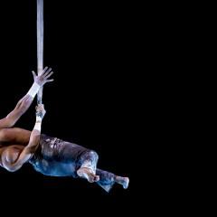 36ème Festival mondial du cirque de demain