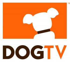 DOG TV : la télé avec du poil et de la queue !