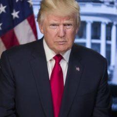 Coincoin bless you ou la vie Trump